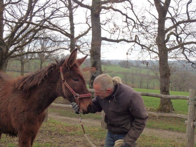 FALBALA - ONC mule née en 2015 - adoptée en juillet 2016 par Thierry 710