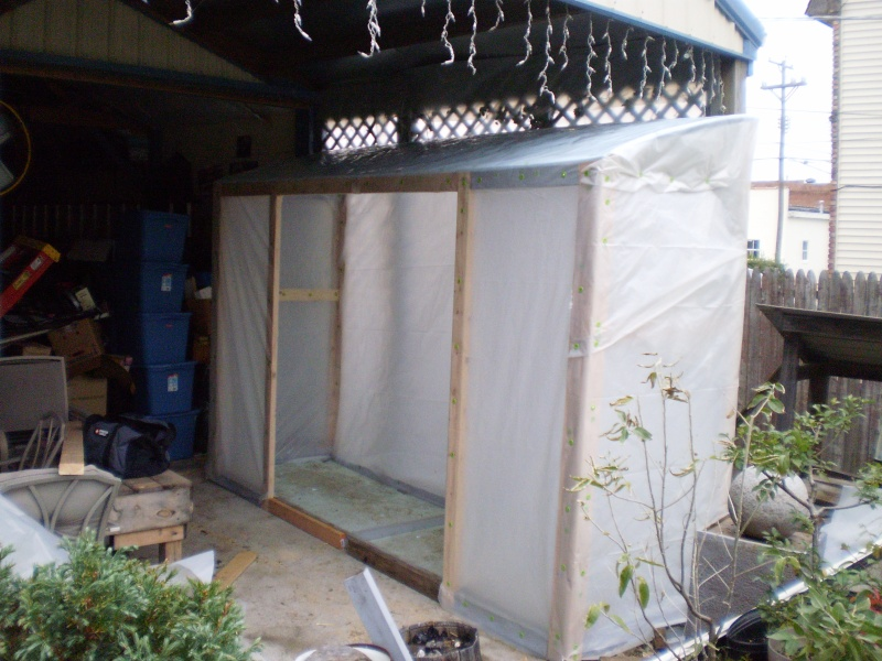 The Cold Frame Groweth Pa120012