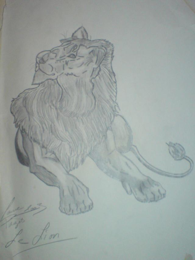 Le coup de patte d'3NO 5_lion10