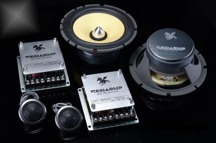 Component pegasus PG166PF TOP MODEL Pg166p10