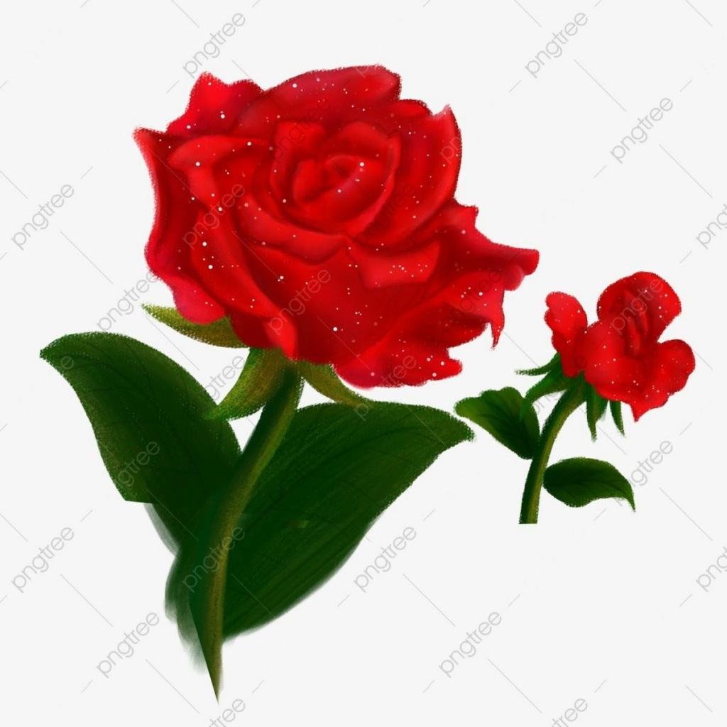 محبة الناس رزق عظيم من الله Img_2297