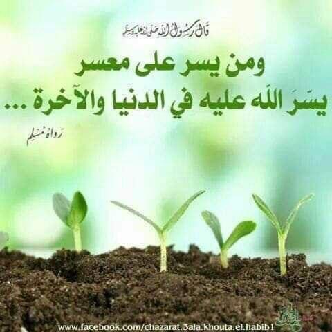 من سترَ مسلمًا ، ستره اللهُ في الدنيا والآخرةِ Img_2300