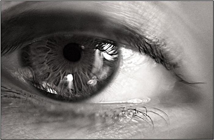 Macro sur Pupille Img_2110