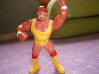 Hulk hogan hasbro Photo11
