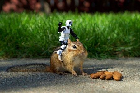 Star wars rockkkkkkk!!!! Chipmu11