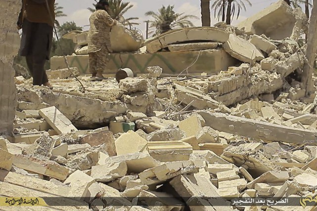 Mai 2015 chute de Palmyre 10292210