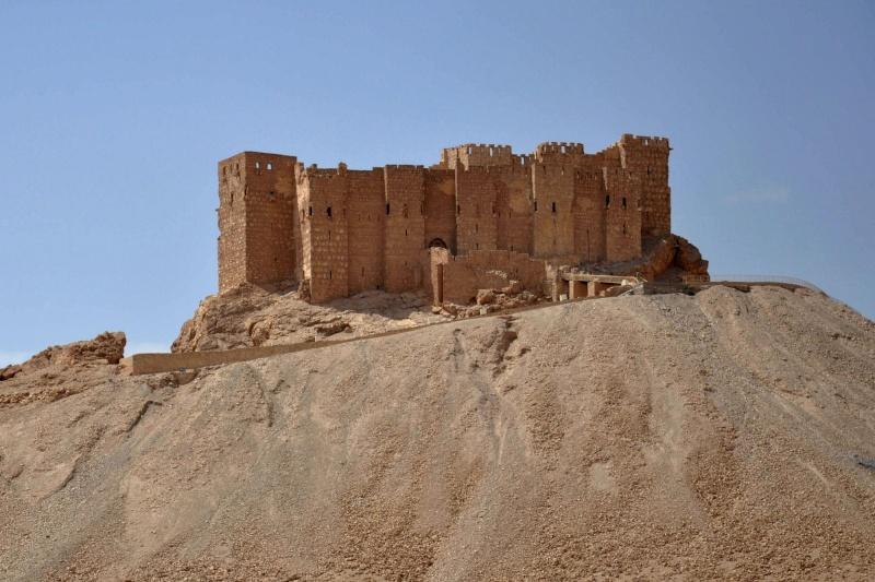Mai 2015 chute de Palmyre 14323810