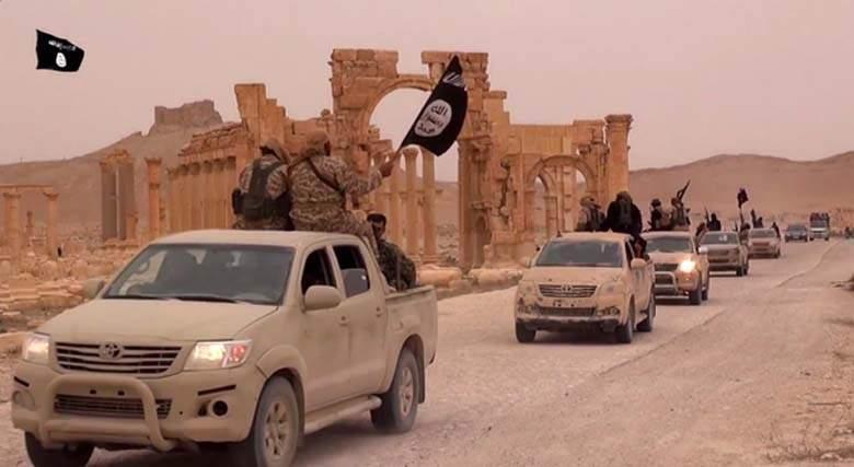 Mai 2015 chute de Palmyre Palmyr10