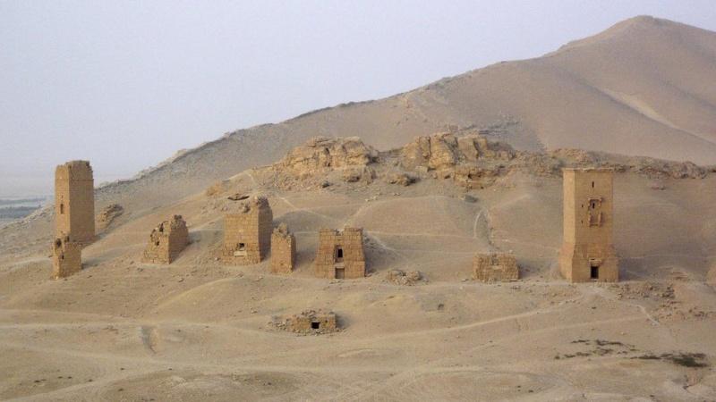 Mai 2015 chute de Palmyre Palmyr25