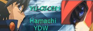 Hamachi Rooms