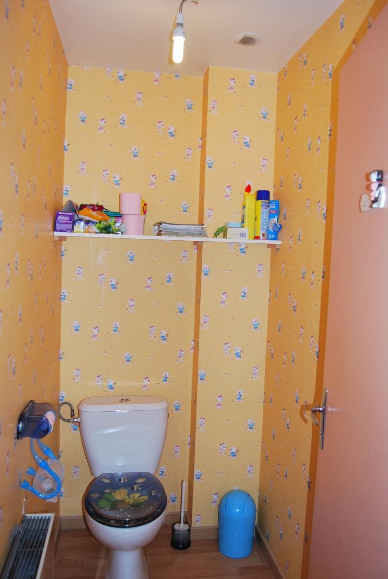a qui appartiennent ces toilettes? - Page 3 Toilet10
