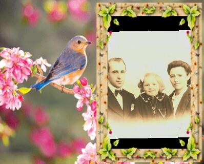 Montage de ma famille - Page 3 Photof83