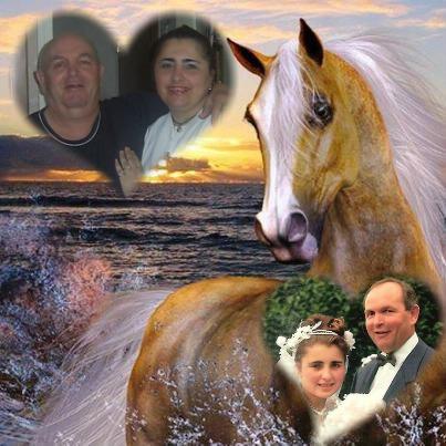 Montage de ma famille - Page 3 Pixiz-11