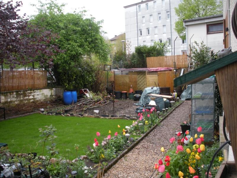 Restauration de jardin Allema12