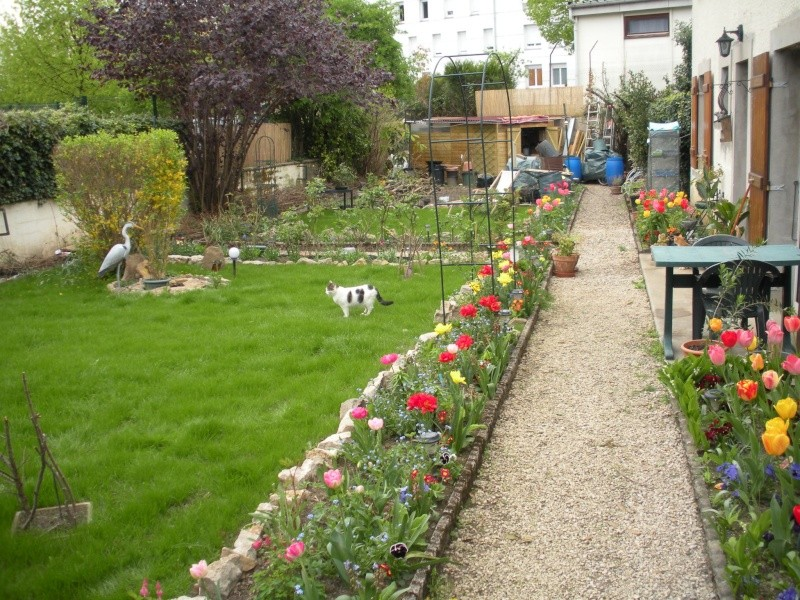 Restauration de jardin Allema14