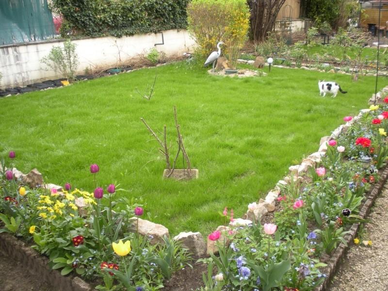 Restauration de jardin Allema15