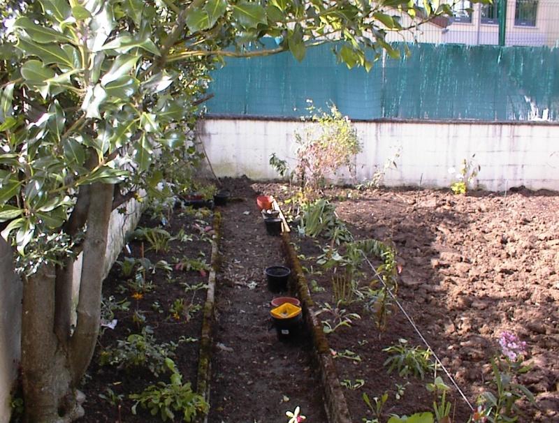 Restauration de jardin Dsc00020