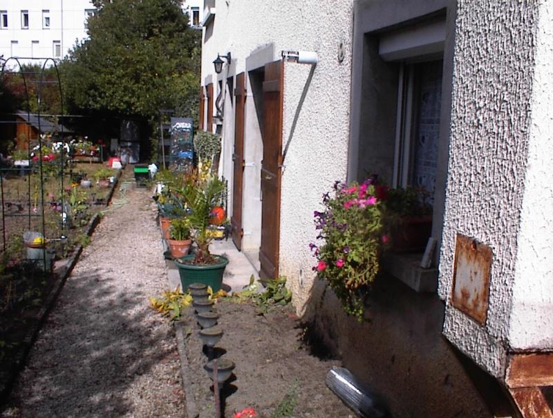 Restauration de jardin Dsc00021