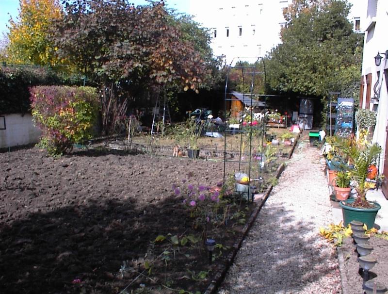 Restauration de jardin Dsc00022