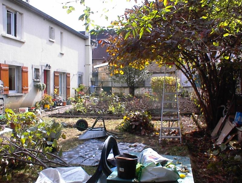 Restauration de jardin Dsc00024