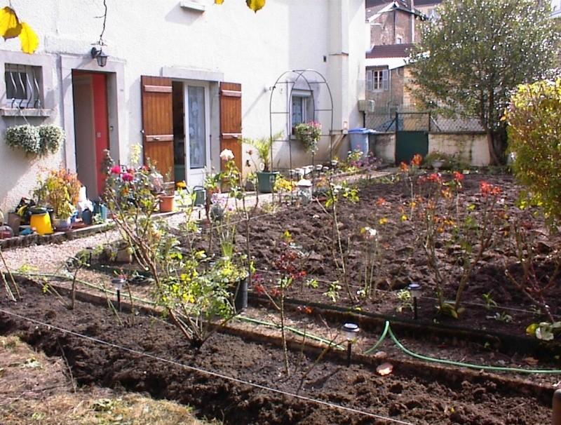 Restauration de jardin Dsc00025
