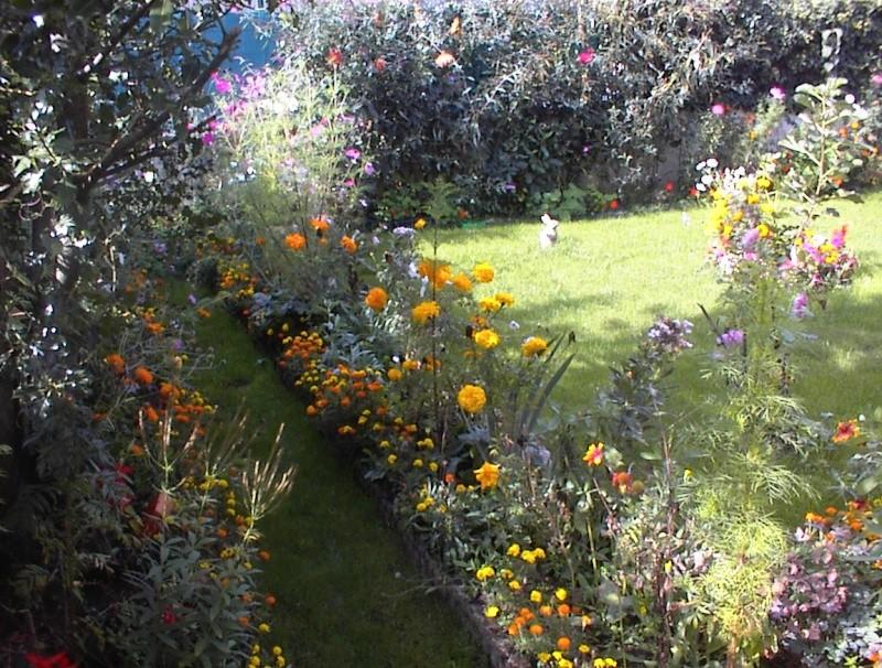 Restauration de jardin Dsc00027