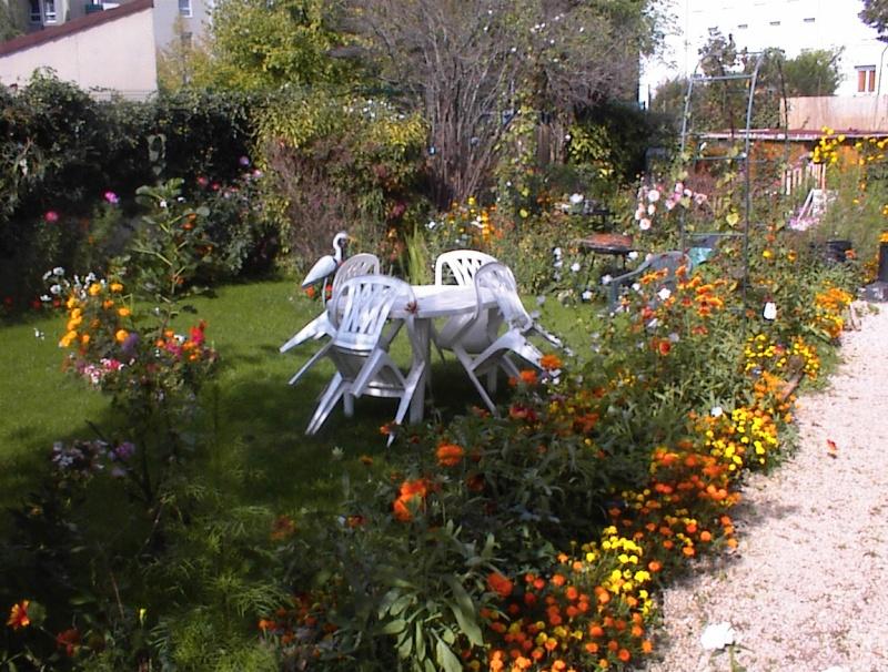 Restauration de jardin Dsc00028