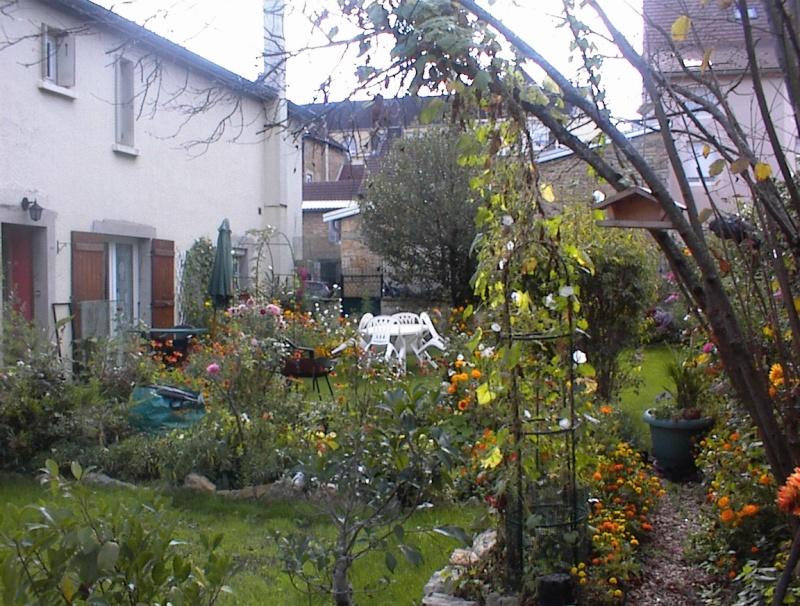 Restauration de jardin Dsc00029