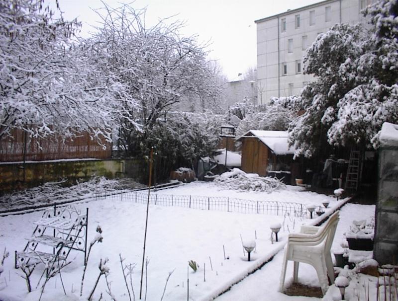 Restauration de jardin Dsc00127