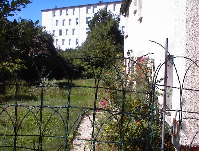 Restauration de jardin Dsc00210