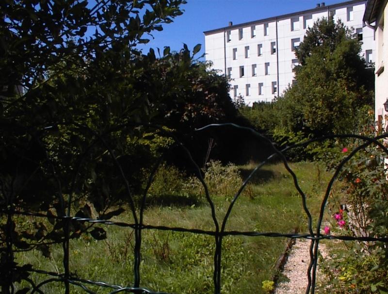 Restauration de jardin Dsc00212