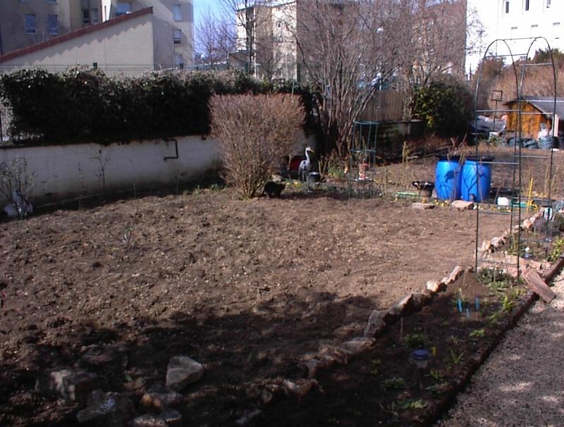 Restauration de jardin Dsc00215