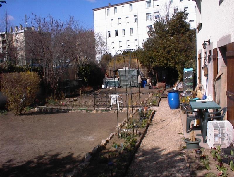 Restauration de jardin Dsc00217