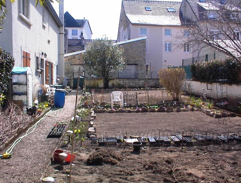 Restauration de jardin Dsc00219