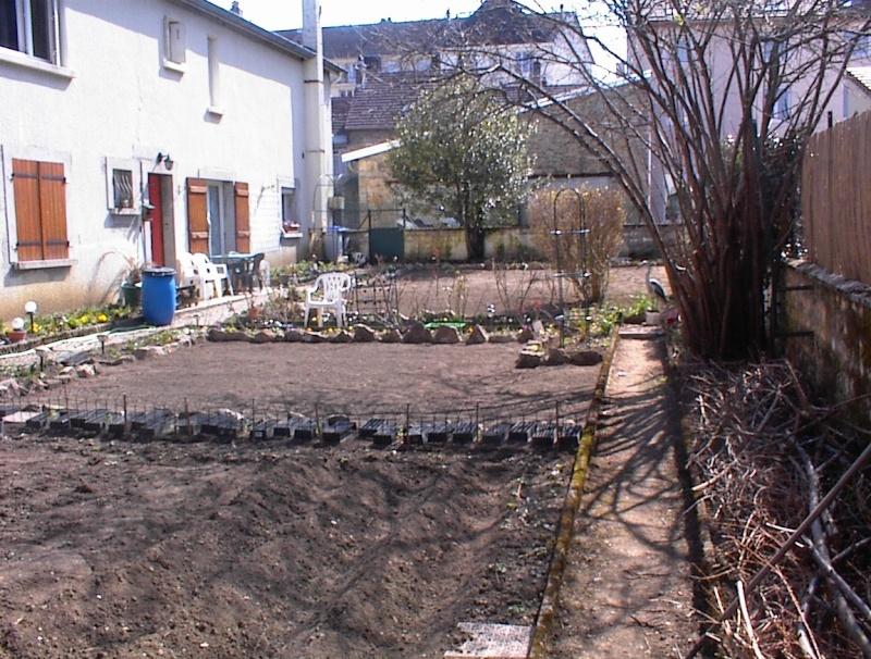 Restauration de jardin Dsc00221
