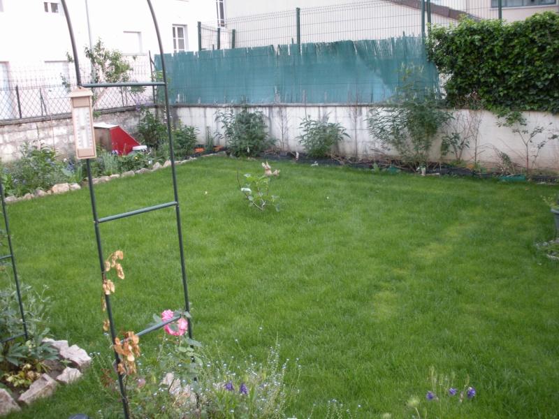Restauration de jardin Gizia_11