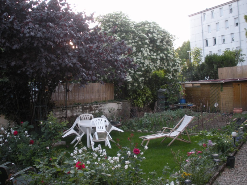 Restauration de jardin Gizia_13