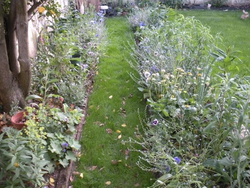 Restauration de jardin Gizia_14