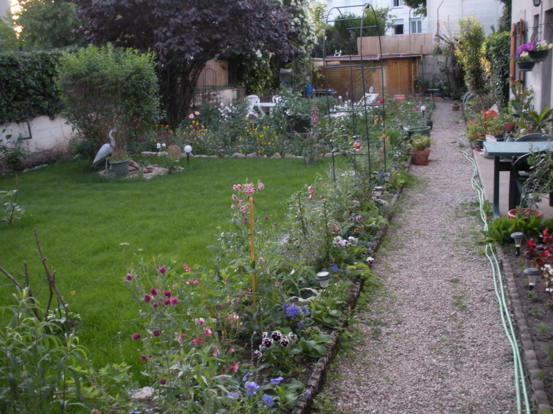 Restauration de jardin Gizia_15