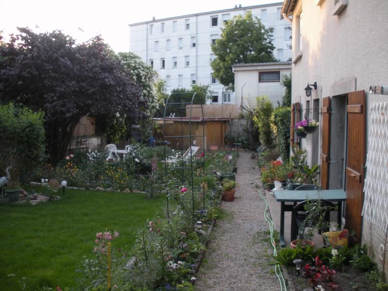 Restauration de jardin Gizia_16