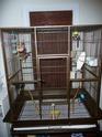 nouvelle cage est elle ok Cage_018
