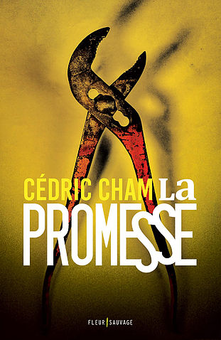 [Cham, Cédric] La Promesse La_pro10