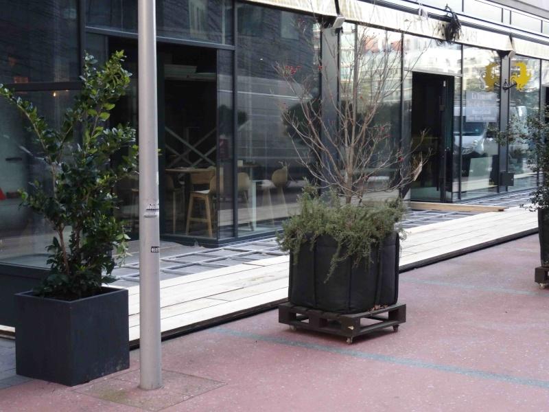 Restaurant La Terrasse Dsc06224