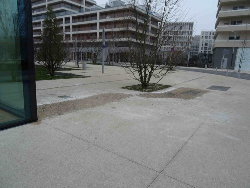 Avenue Pierre Lefaucheux Dsc06236