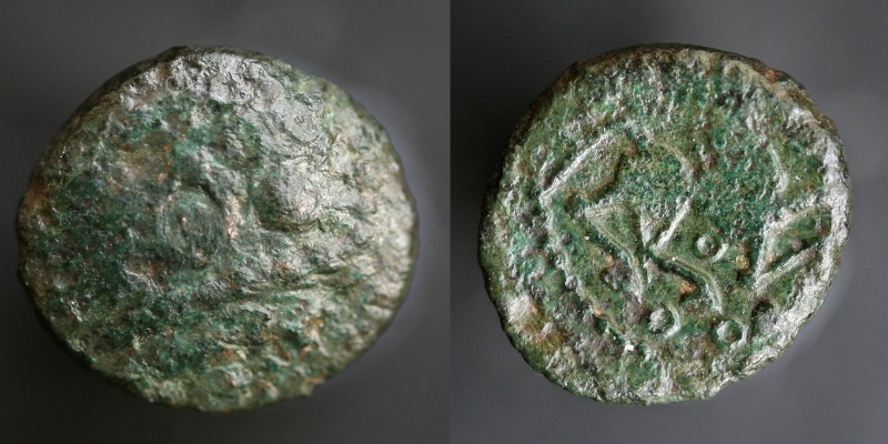 Petit bronze Sénons Bellov11