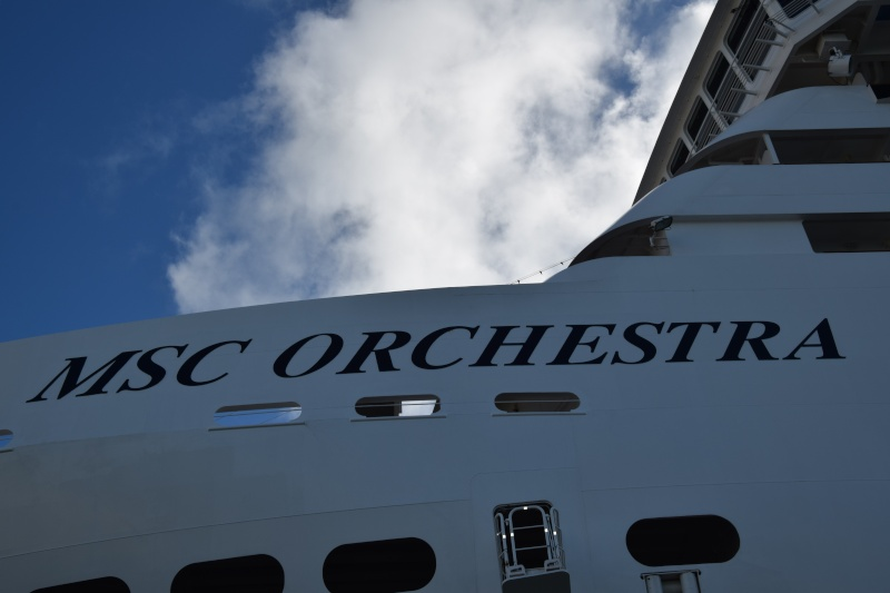 compte-rendu transat Gênes-Fort de France. 23.11.2015 MSC Orchestra  - Page 7 Dsc_0900
