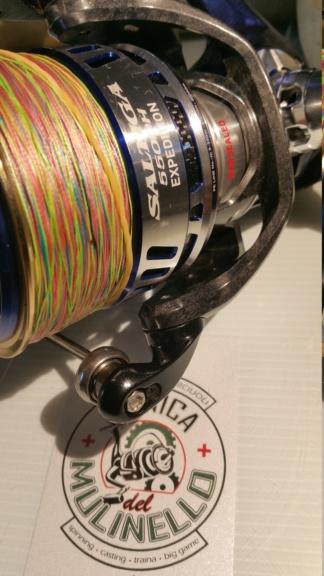 [manutenzione mulinelli] bobina fissa-rotante anche mag sealed - Pagina 3 20190710