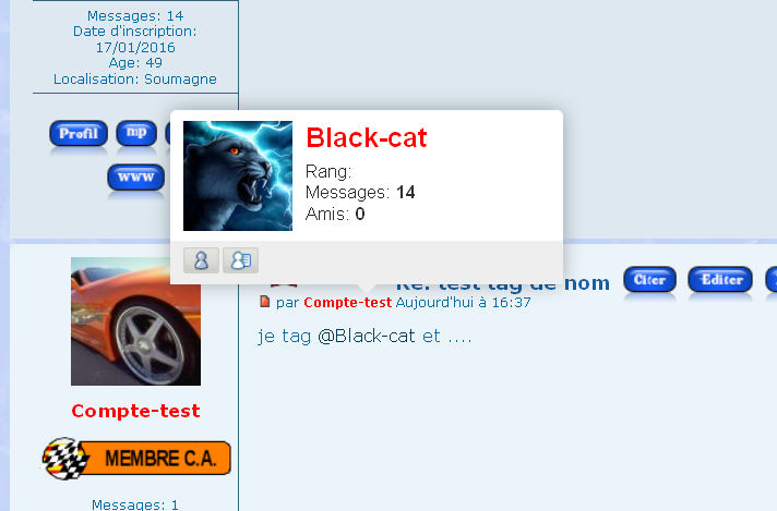 [Sujet] Image du rang dans la tooltip au survol d'un pseudo tagué Prob_t11