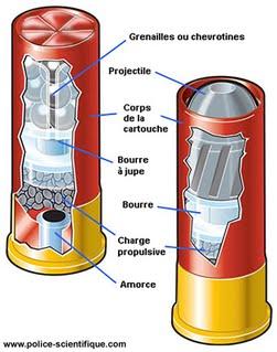 Chevrotine ou brenneke Photo-10