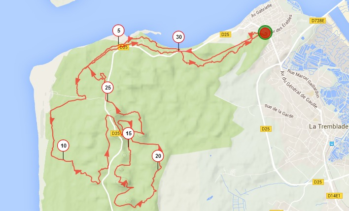 Ronce les Bains 33km (trace gps) Screen41